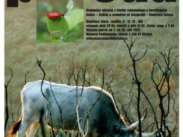 Příroda, Matúš Kocián